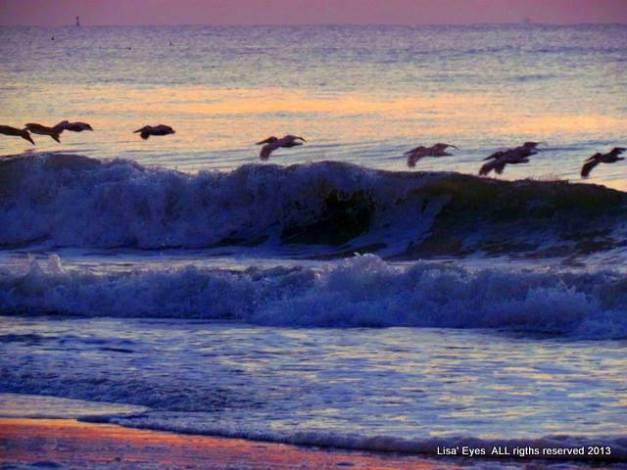 lisa waves